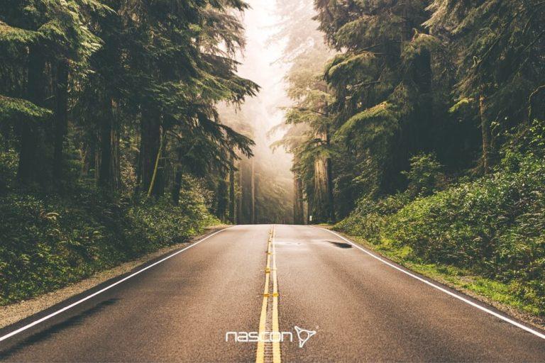 droga onawierzchni asfaltowej prowadząca przezlas