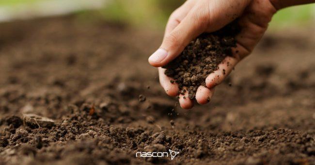 dłoń trzymająca grunt